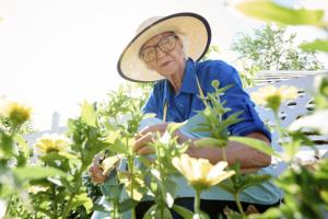 senior lady gardening